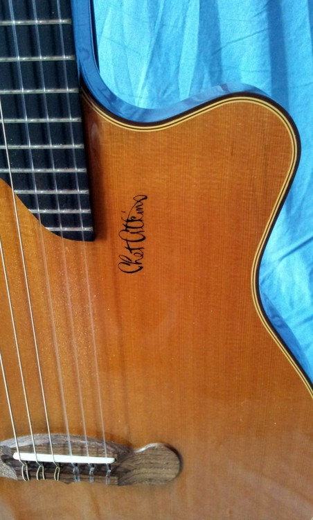 Gibson chet atkins celebrity guitar collections